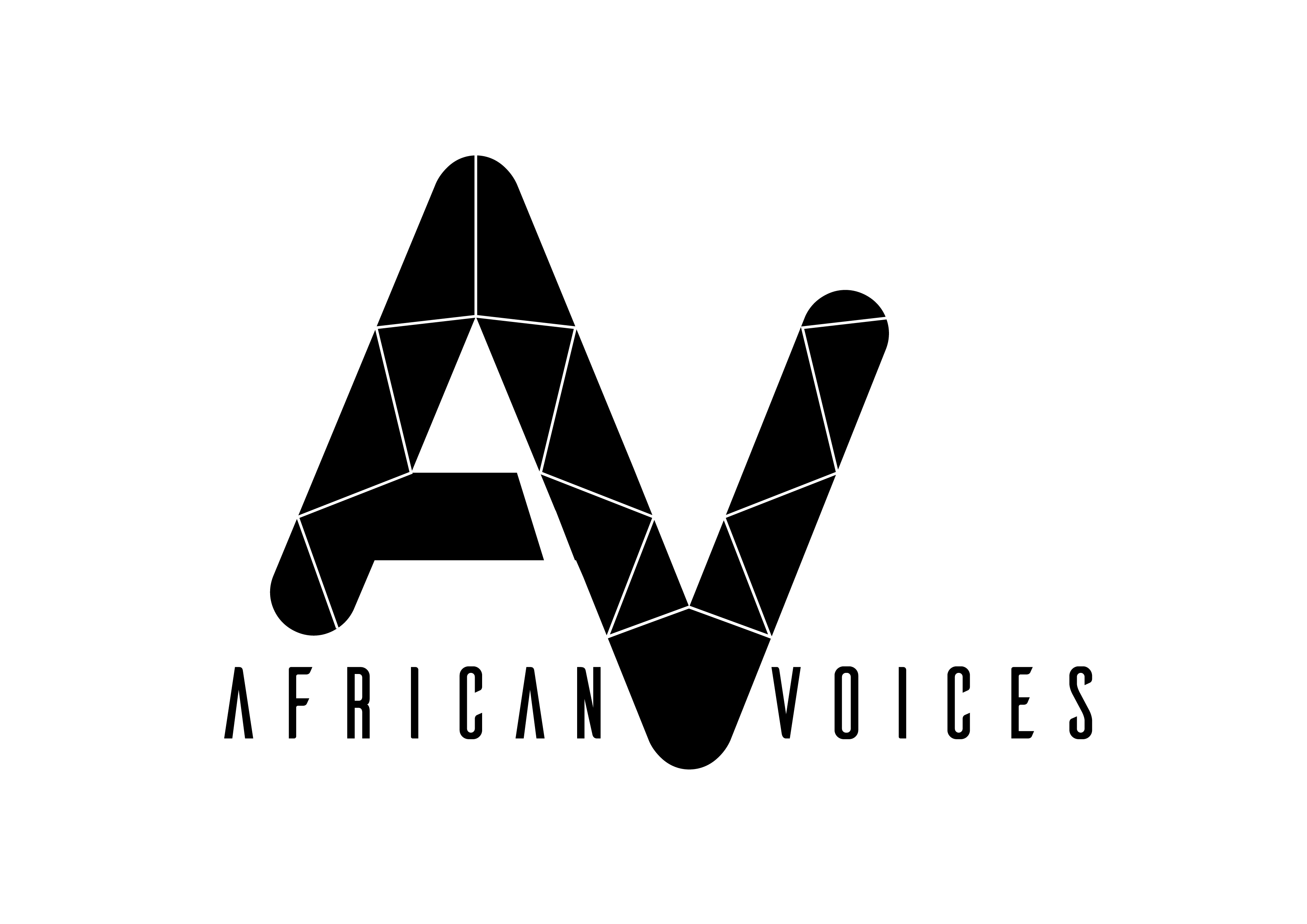 African Voices II